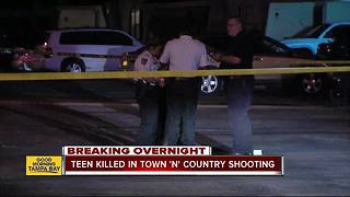 17-year-old killed in Town 'n' Country shooting - Video