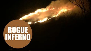 Huge gorse fire in Cornwall may have been sparked by a firework