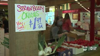 Florida Strawberry Festival opens in Plant City with COVID-19 safety measures