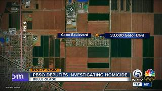 Body found floating in canal in Belle Glade; homicide investigation underway - Video