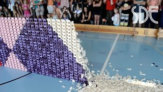 Wall with 41,680 Dominoes sets new World Record - Video