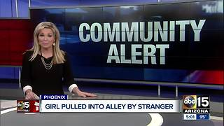 Student pulled into Phoenix alley - Video