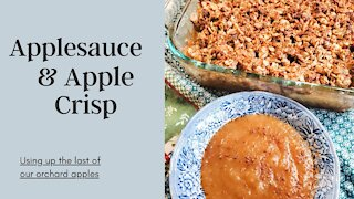 Using Up Apple Orchard Seconds - Applesauce & Apple Crisp