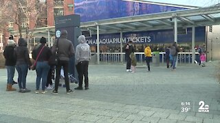 National Aquarium reopens after adopting new measures to improve social distancing