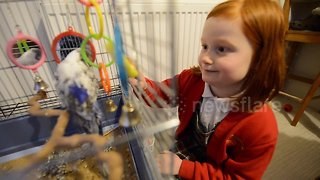 A real-life Dr Doolittle family who keep 46 pets