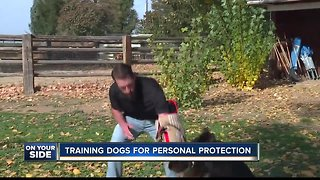 Personal Protection Dog - Video