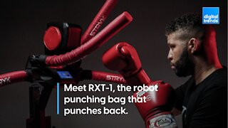 Meet RXT-1: The Robot Punching Bag That Punches Back
