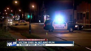 Victim dies in late night hit and run - Video
