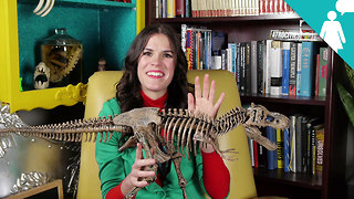 Stuff Mom Never Told You: Herstory: The Lady Fossil Hunter - Video