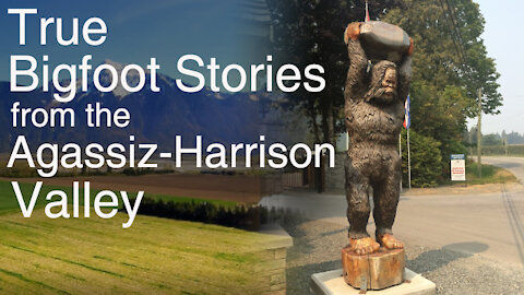 Classic Canadian Sasquatch Stories - Episode 1: The Agassiz-Harrison Valley