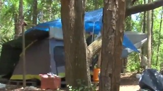 Sheriff responds to homeless camp near bus stop in Martin County - Video