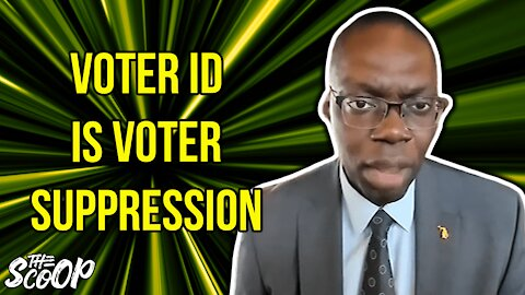 Michigan Lt. Gov. Claims Voter ID Laws Are Voter Suppression