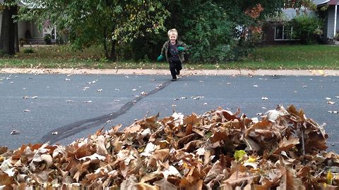 Kids Jumping Into Leaves