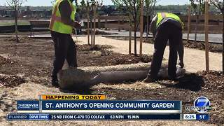 St. Anthony's opening community garden - Video
