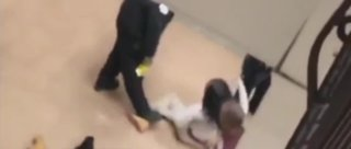 Teen tased by officers at school faces felony charges