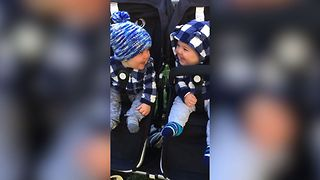 Adorable Giggling Babies - Video