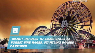 Disney Refuses To Close Gates As Forest Fire Rages, Startling Images Captured - Video