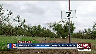 Cold weather affecting Oklahoma crops - Video