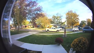 Shelby Township police investigating hit and run
