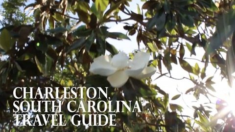 What to do when visiting Charleston, South Carolina