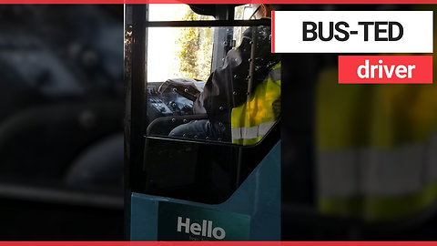 Bus driver reads newspaper behind the wheel during rush hour