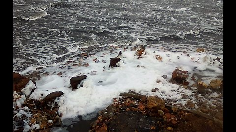 Ice foam on the lake