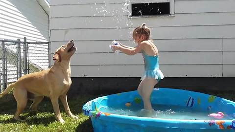 Tot Girl And A Dog Playing Fetch With Water