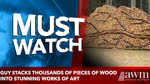 Guy Stacks Thousands Of Pieces Of Wood Into Stunning Works Of Art