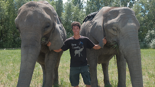 20-Year-Old Acrobat Performs Tricks With His Elephant Family | BEAST BUDDIES - Video