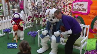 Easter bunny arrives at Bay Park Square Mall - Video