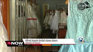 Alfred Angelo Bridal closes doors - Video