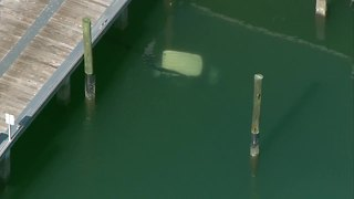 Golf cart submerged at Riviera Beach City Marina - Video
