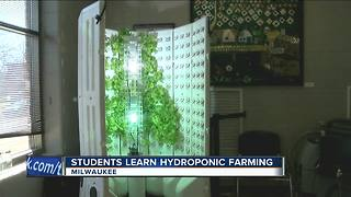 Students in Milwaukee learn hydroponic farming - Video