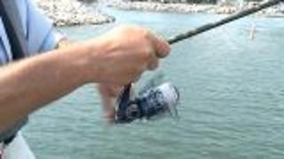 How To Cast With A Spinning Reel - Video