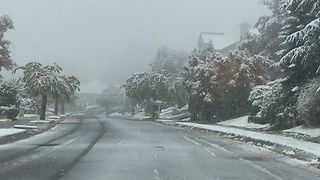 Snow Falls in Washington State as Winter Weather Moves East - Video