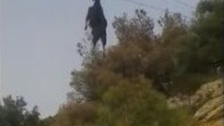 Goat Hanging by Horns From Overhead Cables Is Rescued - Video