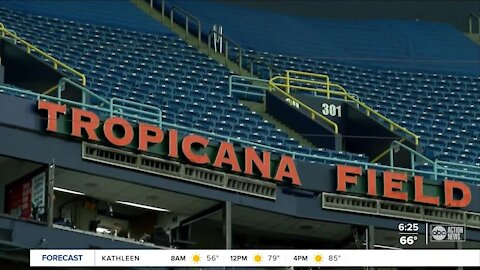 Tampa Bay Rays fans will see big safety changes at Tropicana Field this year