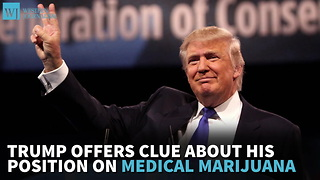 Trump Offers Clue About His Position On Medical Marijuana - Video