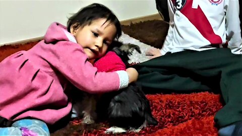 Young cancer survivor's reaction to new puppy is truly heartwarming
