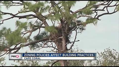 Eagle's nest costing home builders thousands