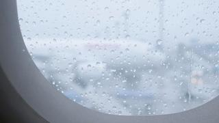 What To Do When Your Flight Is Canceled Or Diverted - Video