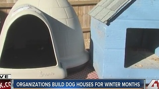Volunteers build dog houses for neglected animals - Video