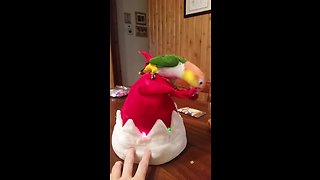 Grinch parrot attacks singing Christmas hat