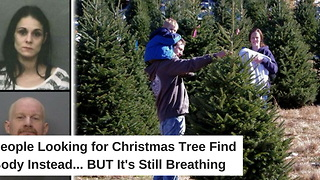 People Looking for Christmas Tree Find Body Instead. But It's Still Breathing - Video