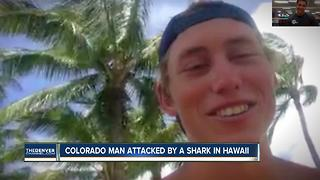 Colorado man can't catch break from animal attacks - Video