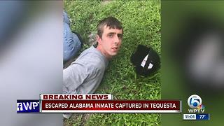 MCSO CATCHES ESCAPED INMATE - Video