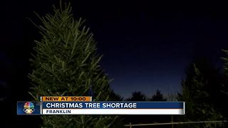 National Christmas tree shortage impacts Wisconsin sellers - Video