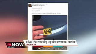 Driver tries renewing tag with permanent marker - Video