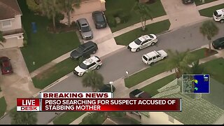PBSO looking for male who stabbed mother in Royal Palm Beach