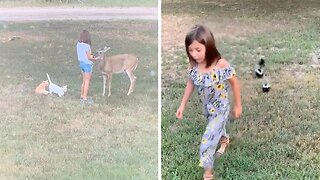 Little Girl Speaks To And Has Wild Animals Follow Her Like A Real-life Doctor Dolittle